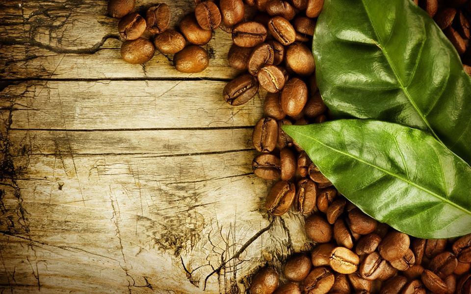 Export van koffie
